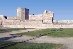 Mur du château Photo libre de droits