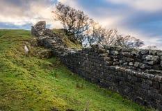 Mur du ` s de Hadrian, le Northumberland image libre de droits