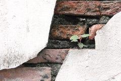 Mur en béton criqué couvert de surface grise de ciment comme backgr image stock
