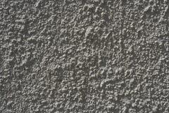 Mur en béton de jardin en soleil Photographie stock libre de droits