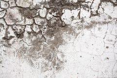 Mur en béton peint par texture Images stock