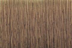 Mur en bambou Photo libre de droits