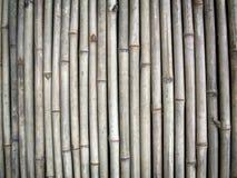 Mur en bambou Photo stock