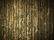 Mur en bois d'or Images stock