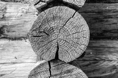 Mur en bois fait à partir des rondins Fond blanc noir en bois de texture Fin vers le haut image libre de droits