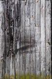 Mur en bois foncé - verticale Photo libre de droits