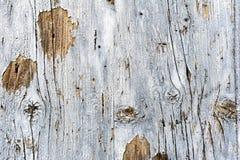 Mur en bois pour le fond photo libre de droits