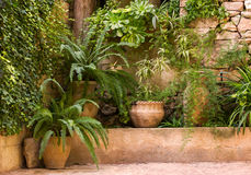 Mur en pierre d'alonge vert de jardin Image stock