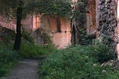 Mur en pierre de château médiéval Images stock