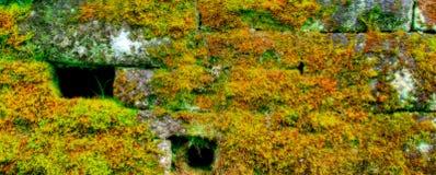 Mur en pierre de Mossed Photographie stock