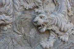 Mur en pierre de tigre Photos libres de droits