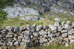 Mur en pierre dedans à Valle del Lago Photographie stock