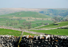 Mur en pierre en vallées de Yorkshire (R-U) Images libres de droits