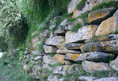 Mur en pierre, herbe envahie et mousse. Photo stock