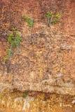 Mur en pierre rouge Image libre de droits