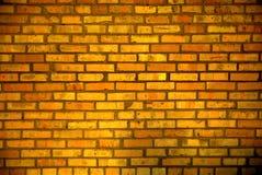 Mur ensoleillé Photos libres de droits