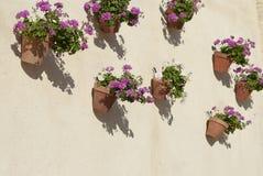 Mur espagnol avec des fleurs Andalousie image libre de droits