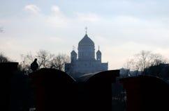 Mur et Christ de Moscou Kremlin la cathédrale de rédempteur Photographie stock libre de droits