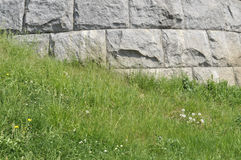 Mur et herbe Images libres de droits