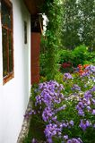 Mur et lilas blancs Photo libre de droits