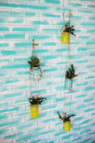 Mur et pots de fleurs de couleur là-dessus Photo libre de droits