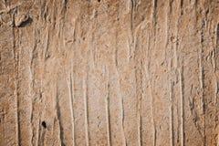 Mur fait de planches en bois Texture en bois de mur photos stock