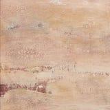 Mur grunge de plâtre Photos libres de droits