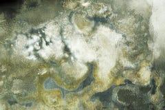 Mur grunge humide avec le moule images libres de droits