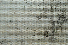 Mur grunge texturisé Photographie stock