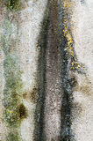 Mur humide photos libres de droits