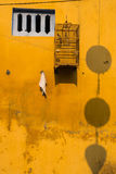 Mur jaune avec de petites fenêtres et cages à oiseaux Photographie stock