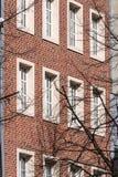 Mur latéral du développement de bâtiment image stock