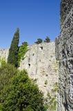 Mur médiéval en Grèce avec l'élevage d'arbres Images libres de droits