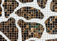Mur moderne de tuile Photos stock