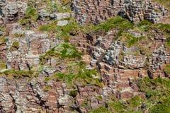 Mur rocheux Images libres de droits