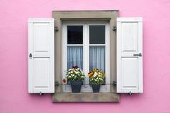 Mur rose avec la fenêtre avec des volets et des pots de fleur Photo libre de droits