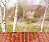 Mur rouge de perspective vide au-dessus des arbres brouillés, maison avec le fond de bokeh, pour le montage d'affichage de produi Photo stock