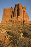 Mur rouge de roche image stock