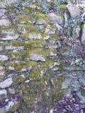Mur superficiel par les agents photos stock
