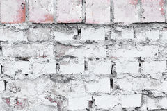 mur tła white Obrazy Royalty Free