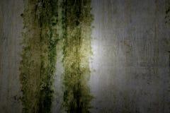 Mur texturisé avec la lumière gentille Image libre de droits