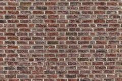 Mur typique avec les briques rouges Image stock