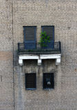 Mur urbain Photo stock