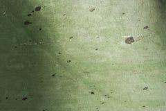 Mur vert Photos libres de droits