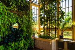 Mur vert dans Howard Peters Rawlings Conservatory, dans le druide photographie stock libre de droits