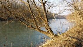 Mura river Stock Photography