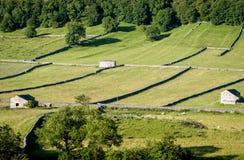 Mura a secchi e granai - vallate di Yorkshire, Inghilterra, Immagini Stock