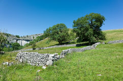 Mura a secchi - vallate di Yorkshire, Inghilterra Immagine Stock Libera da Diritti