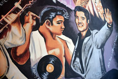 Mural of Elvis Royalty Free Stock Images
