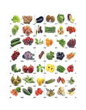 Mural of fruits and vegetables Royalty Free Stock Photo